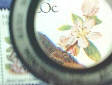 Focusable Closeup Lens